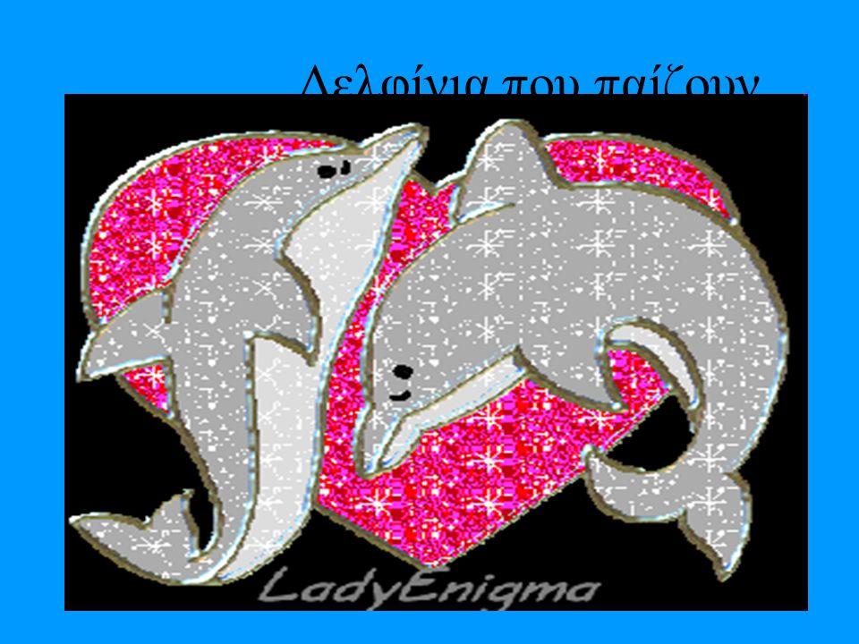 Η ιστορία του Οι πρόγονοι των σημερινών δελφινιών εμφανίστηκαν πριν από 65.000.000 χρόνια. Οι ειδικοί υποστηρίζουν ότι ήταν χερσαία θηλαστικά που με τ