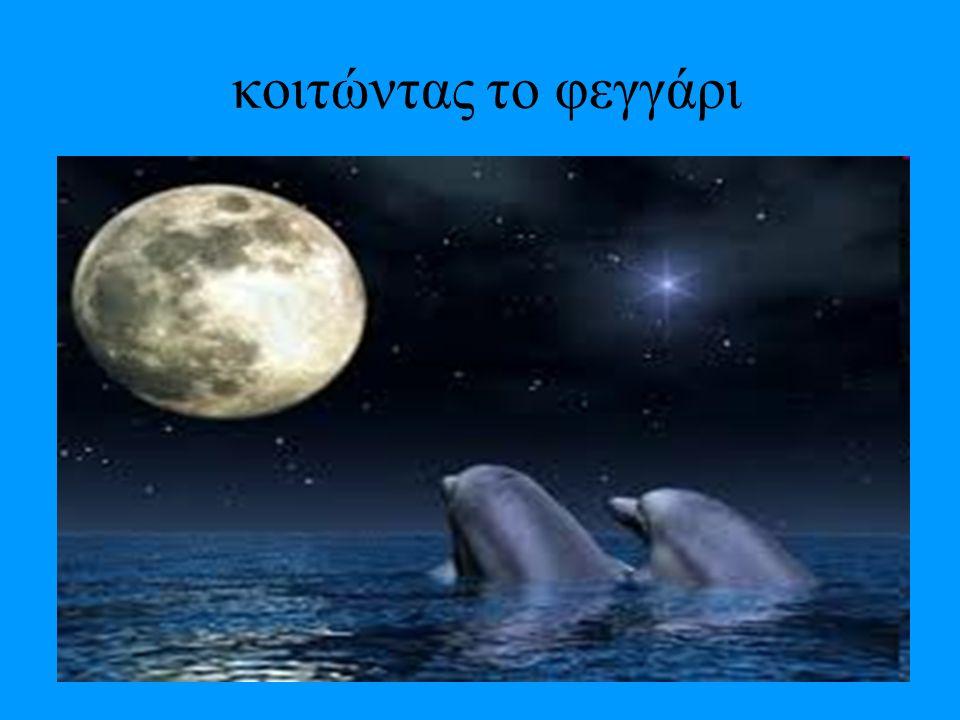 κι άλλες πληροφορίες Τα δελφίνια είναι θαλάσσια θηλαστικά, που συγγενεύουν με τις φάλαινες. Υπάρχουν περίπου 40 είδη δελφινιών από 17 γένη. Το μέγεθός