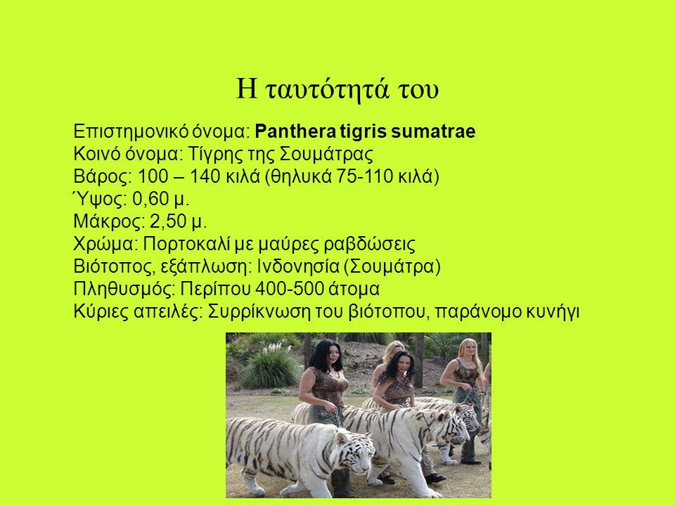 Ο τίγρης