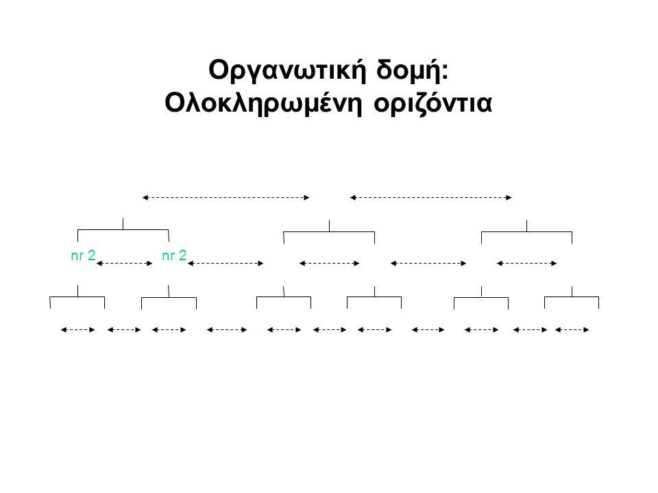 nr 2 Οργανωτική δομή: Ολοκληρωμένη οριζόντια
