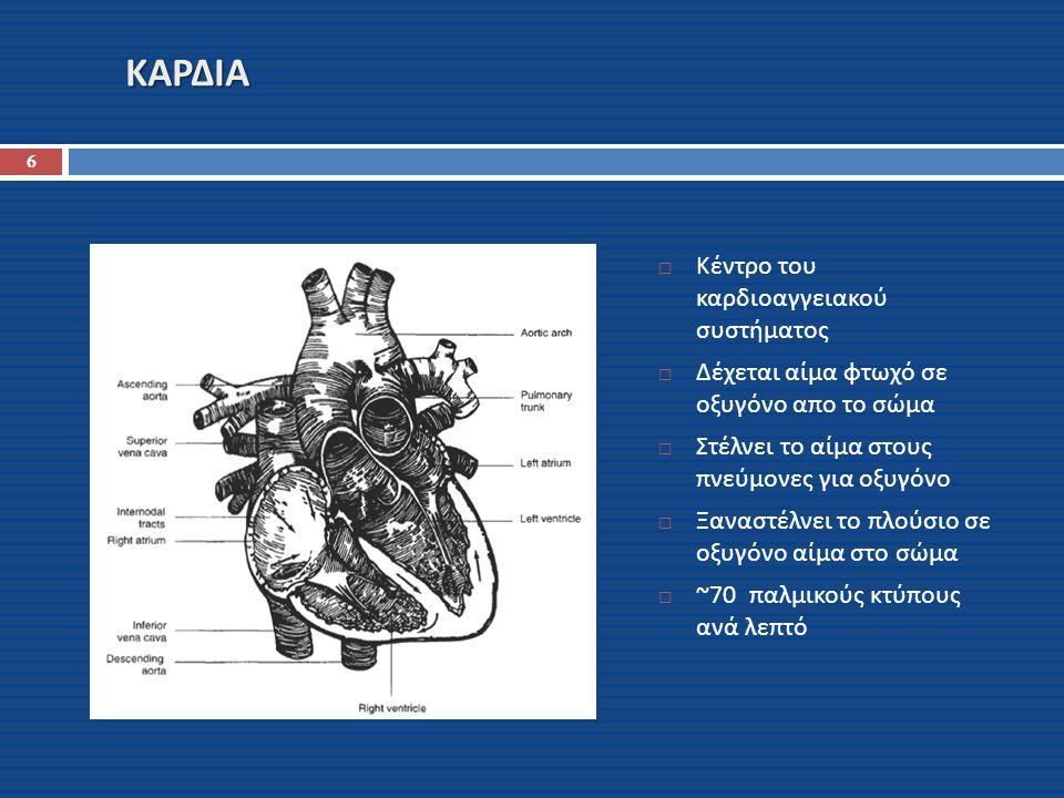 ΚΑΡΔΙΑ  Κέντρο του καρδιοαγγειακού συστήματος  Δέχεται αίμα φτωχό σε οξυγόνο απο το σώμα  Στέλνει το αίμα στους πνεύμονες για οξυγόνο  Ξαναστέλνει