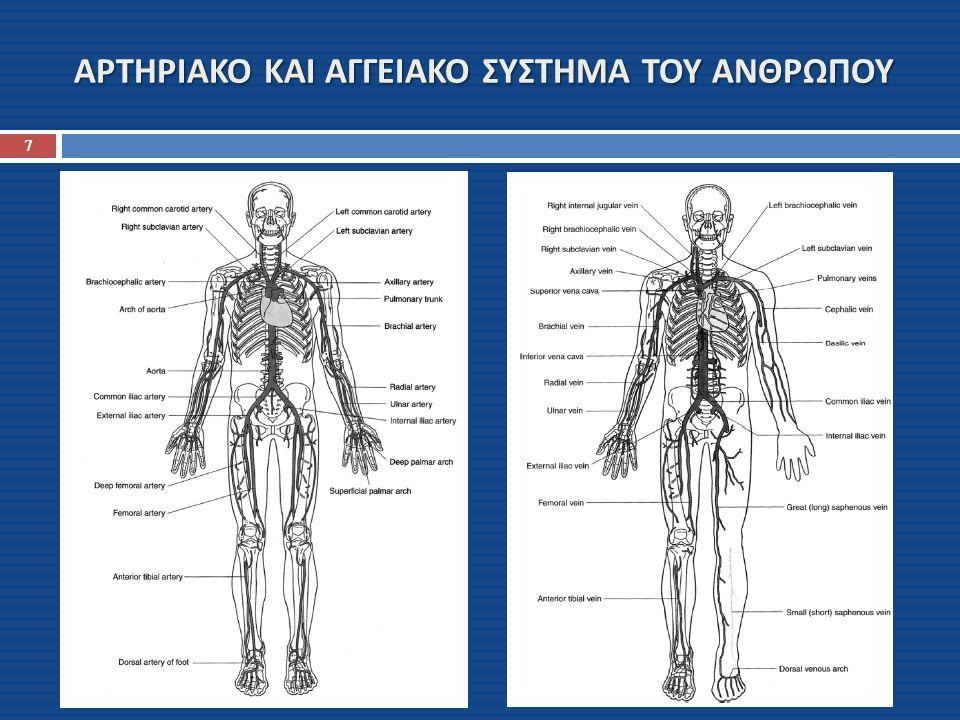 ΣΥΣΤΗΜΙΚΟ ΚΑΙ ΠΝΕΥΜΟΝΙΚΟ ΣΥΣΤΗΜΑ ΤΟΥ ΑΝΘΡΩΠΟΥ 8 84% του συνολικού όγκου του αίματος στο σώμα είναι στην συστημική κυκλοφορία και 16% στην καρδιά και στούς πνεύμονες Απο αυτό το 84% της συστημικής κυκλοφορίας, 64% είναι στις φλέβες, 13% στις αρτηρίες και 7% στις αρτηριόλες και στα τριχοειδή αγγεία Η καρδιά περιέχει 7% του αίματος και τα πνευμονικά αγγεία 9% Τα δύο συστήματα έχουν την ίδια παροχή Q (flow rate)