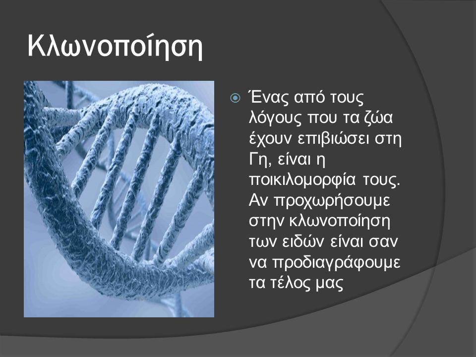 Κλωνοποίηση  Ένας από τους λόγους που τα ζώα έχουν επιβιώσει στη Γη, είναι η ποικιλομορφία τους.