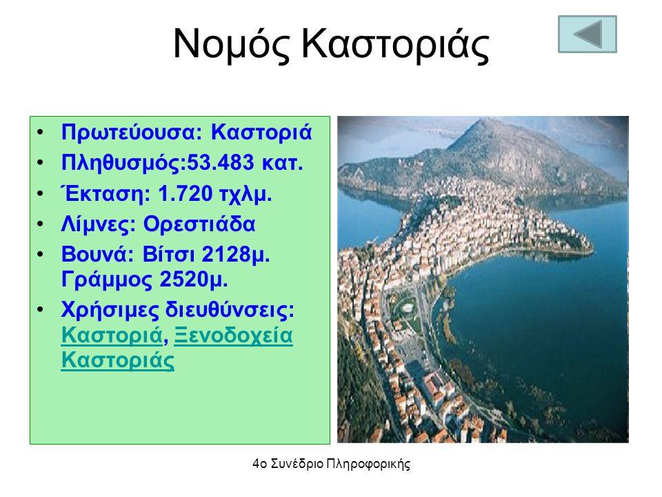 Νομός Καστοριάς Πρωτεύουσα: Καστοριά Πληθυσμός:53.483 κατ. Έκταση: 1.720 τχλμ. Λίμνες: Ορεστιάδα Βουνά: Βίτσι 2128μ. Γράμμος 2520μ. Χρήσιμες διευθύνσε