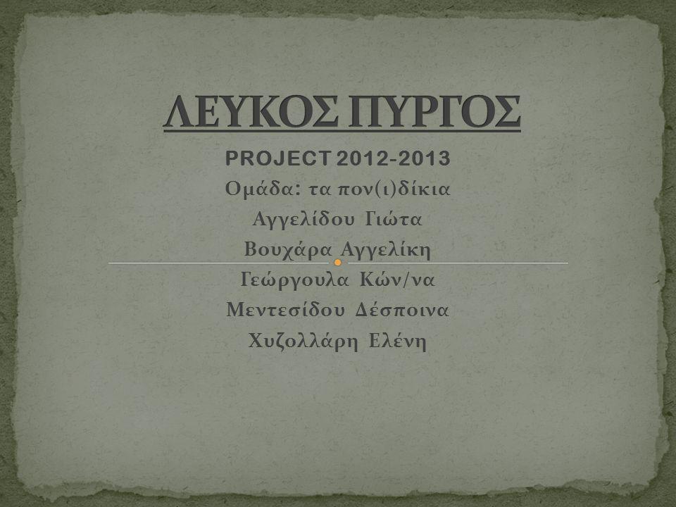 PROJECT 2012-2013 Ομάδα : τα πον(ι)δίκια Αγγελίδου Γιώτα Βουχάρα Αγγελίκη Γεώργουλα Κών/να Μεντεσίδου Δέσποινα Χυζολλάρη Ελένη