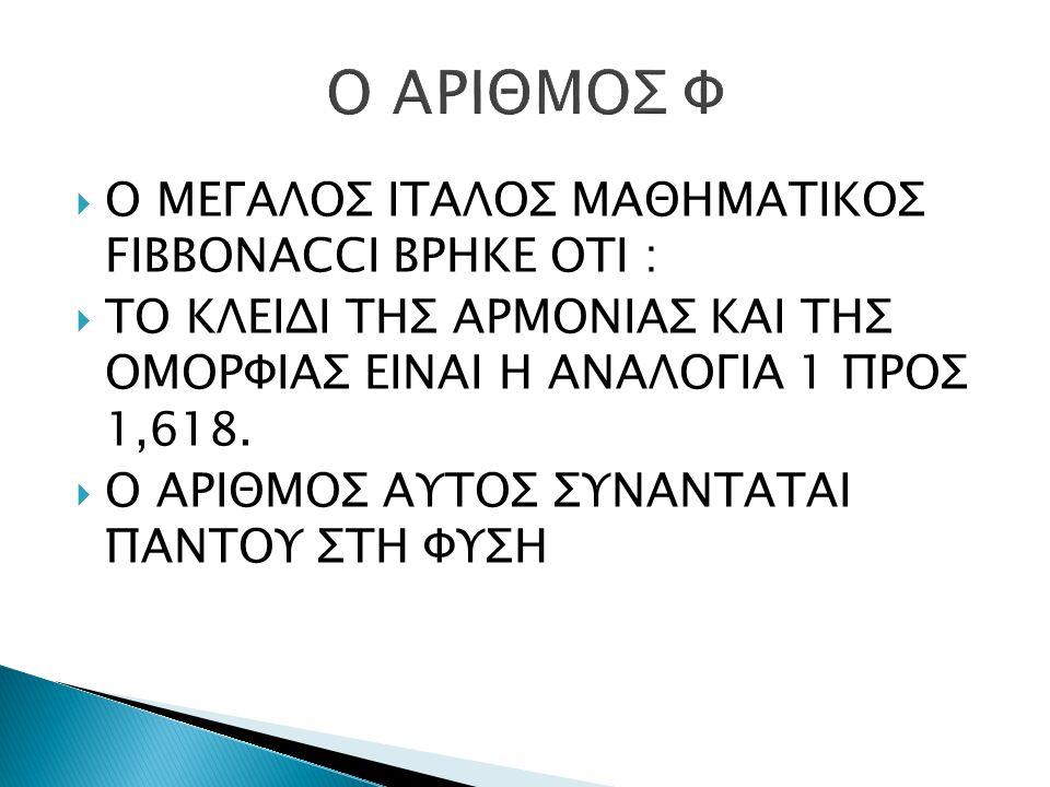  Ο ΜΕΓΑΛΟΣ ΙΤΑΛΟΣ ΜΑΘΗΜΑΤΙΚΟΣ FIBBONACCI ΒΡΗΚΕ ΟΤΙ :  ΤΟ ΚΛΕΙΔΙ ΤΗΣ ΑΡΜΟΝΙΑΣ ΚΑΙ ΤΗΣ ΟΜΟΡΦΙΑΣ ΕΙΝΑΙ Η ΑΝΑΛΟΓΙΑ 1 ΠΡΟΣ 1,618.  Ο ΑΡΙΘΜΟΣ ΑΥΤΟΣ ΣΥΝΑΝ