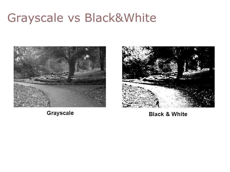 Grayscale vs Black&White 0,0,0 Grayscale Black & White