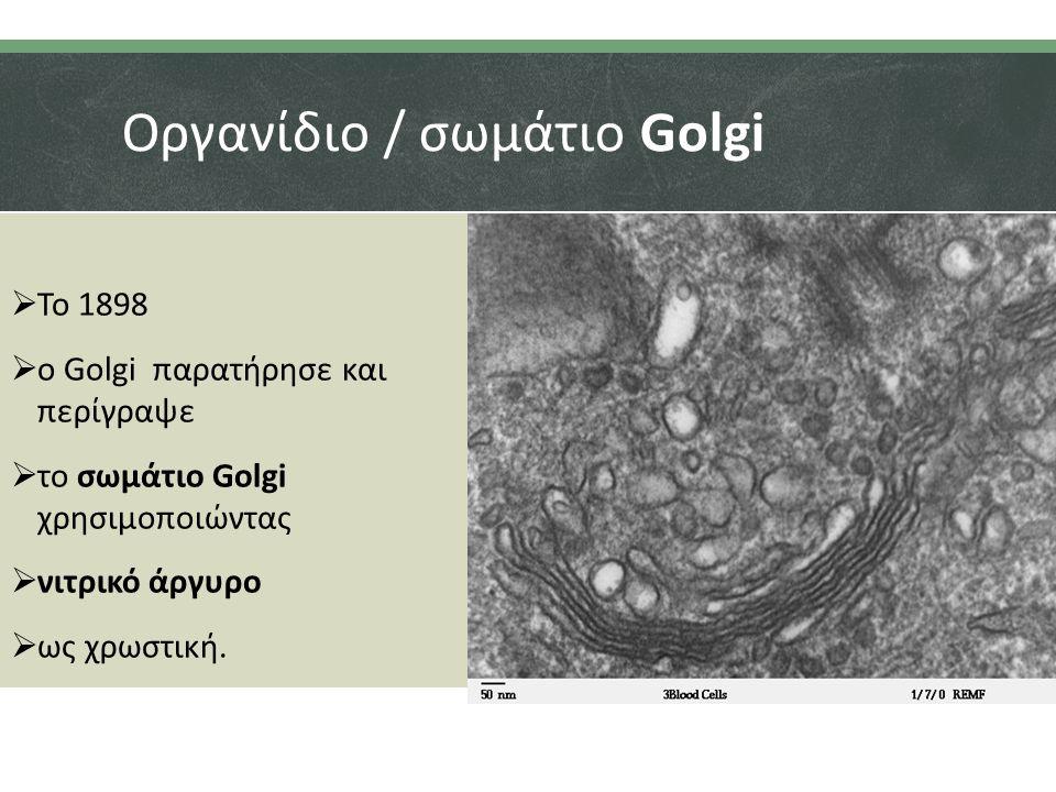 Οργανίδιο / σωμάτιο Golgi  Το 1898  ο Golgi παρατήρησε και περίγραψε  το σωμάτιο Golgi χρησιμοποιώντας  νιτρικό άργυρο  ως χρωστική.