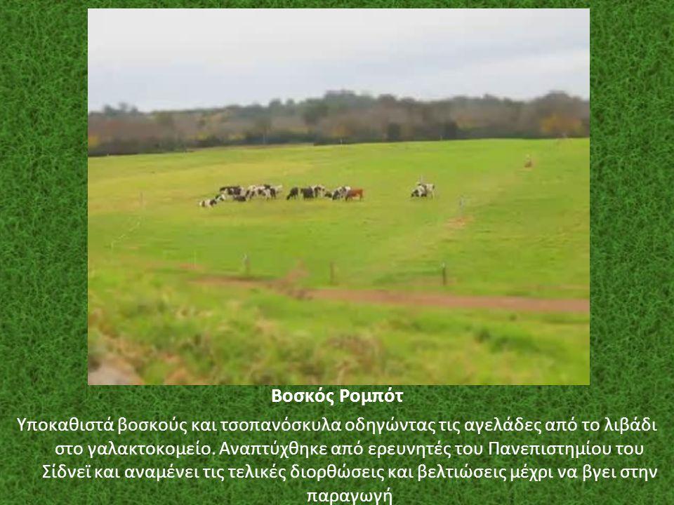 Βοσκός Ρομπότ Υποκαθιστά βοσκούς και τσοπανόσκυλα οδηγώντας τις αγελάδες από το λιβάδι στο γαλακτοκομείο. Αναπτύχθηκε από ερευνητές του Πανεπιστημίου