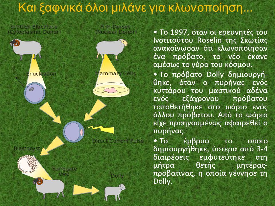 Και ξαφνικά όλοι μιλάνε για κλωνοποίηση... Το 1997, όταν οι ερευνητές του Ινστιτούτου Roselin της Σκωτίας ανακοίνωσαν ότι κλωνοποίησαν ένα πρόβατο, το