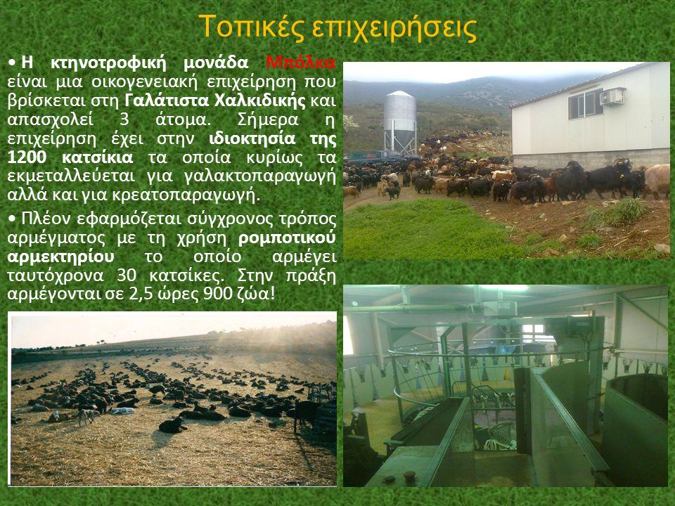 Τοπικές επιχειρήσεις Η κτηνοτροφική μονάδα Μπόλκα είναι μια οικογενειακή επιχείρηση που βρίσκεται στη Γαλάτιστα Χαλκιδικής και απασχολεί 3 άτομα. Σήμε