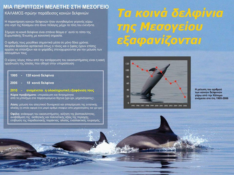 Ένα χαρακτηριστικό παράδειγμα εξαφάνισης ενός είδους δελφινιών από τα ελληνικά νερά.