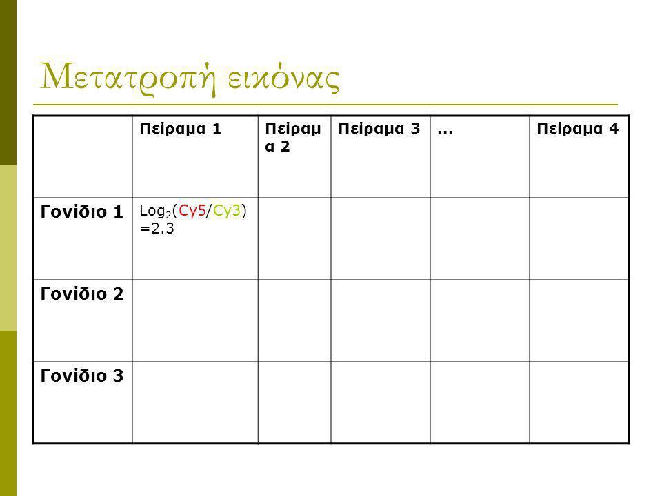 Ερμηνεία αποτελεσμάτων  Ερμηνεία εικόνας Κόκκινο (Cy5)=υπερβάλλουσα έκφραση Πράσινο (Cy3)=χαμηλή έκφραση Κίτρινο = ίση έκφραση  Εντοπισμός ορίων κου