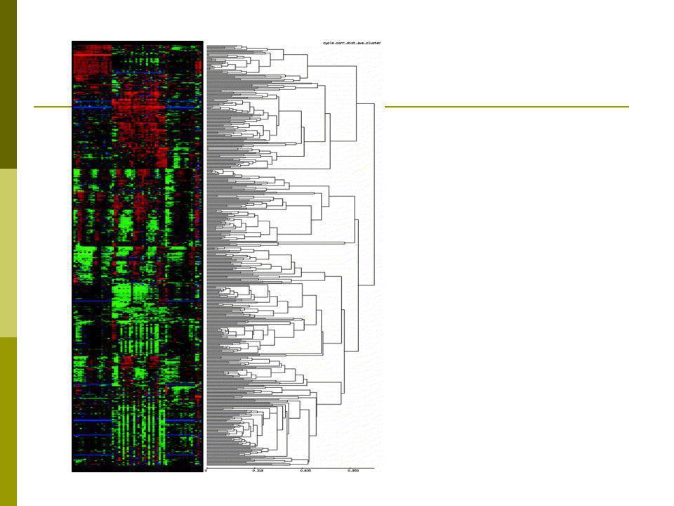 Μειονεκτήματα Ιεραρχικής Ομαδοποίησης  Επιβάλλεται φυλογενετικό δέντρο  Δεν είναι καλή μέθοδος για οπτικοποίηση (visualisation) πολλών δεδομένων