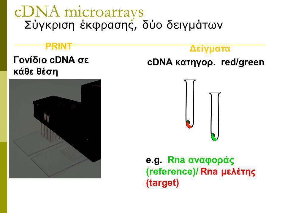 cDNA microarrays Σύγκριση έκφρασης, δύο δειγμάτων PRINT Γονίδιο cDNA σε κάθε θέση Δείγματα cDNA κατηγορ.
