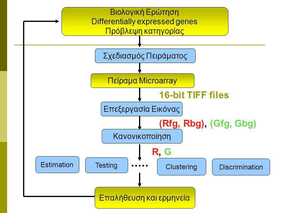 Βιολογική Ερώτηση Differentially expressed genes Πρόβλεψη κατηγορίας Testing Επαλήθευση και ερμηνεία Πείραμα Microarray Estimation Σχεδιασμός Πειράματος Επεξεργασία Εικόνας Κανονικοποίηση Clustering Discrimination R, G 16-bit TIFF files (Rfg, Rbg), (Gfg, Gbg)