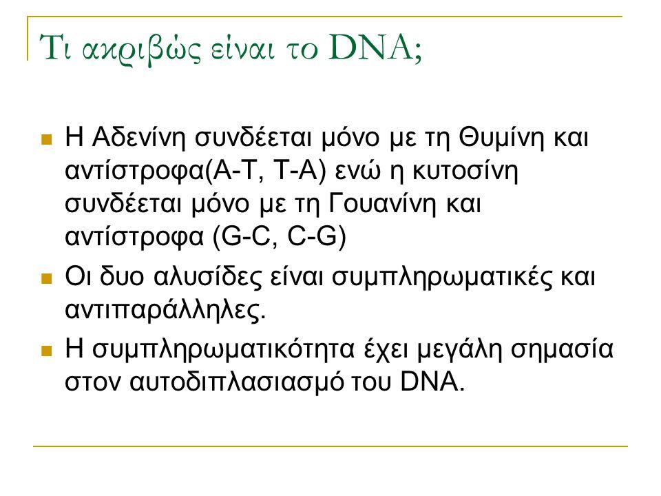 Τι ακριβώς είναι το DNA; Η Αδενίνη συνδέεται μόνο με τη Θυμίνη και αντίστροφα(Α-Τ, Τ-Α) ενώ η κυτοσίνη συνδέεται μόνο με τη Γουανίνη και αντίστροφα (G
