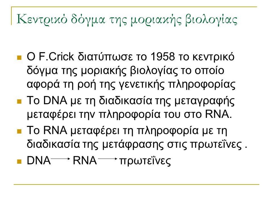 Κεντρικό δόγμα της μοριακής βιολογίας O F.Crick διατύπωσε το 1958 το κεντρικό δόγμα της μοριακής βιολογίας το οποίο αφορά τη ροή της γενετικής πληροφο