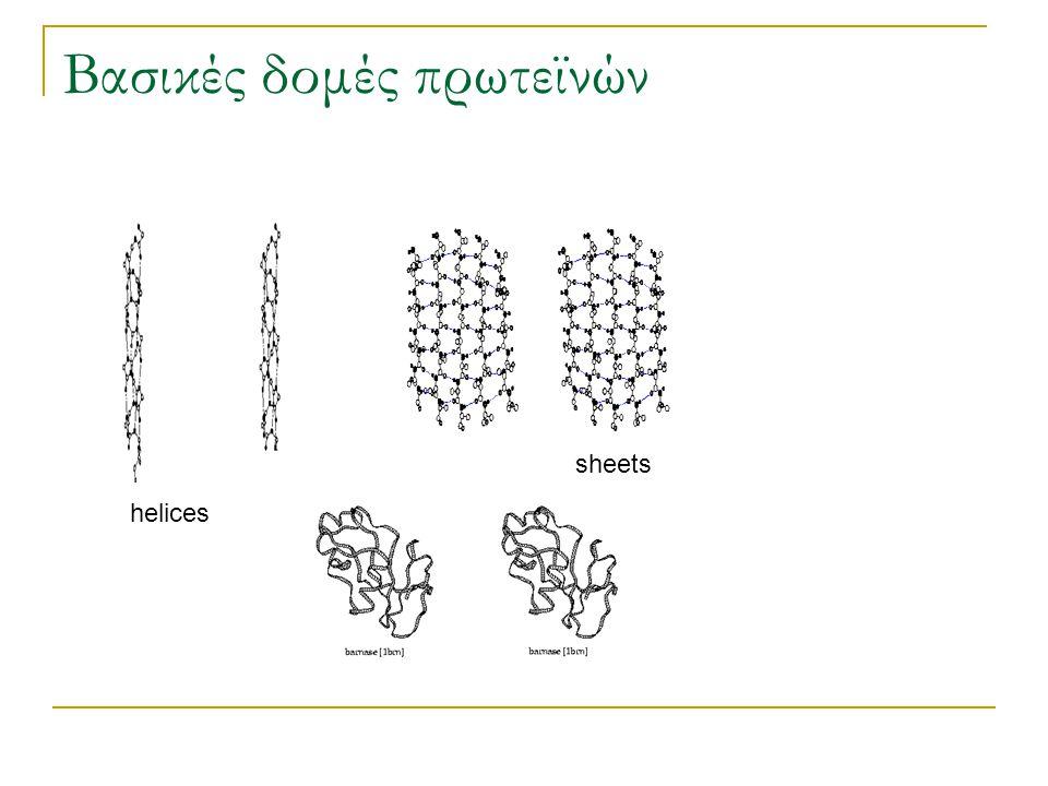 Βασικές δομές πρωτεϊνών helices sheets