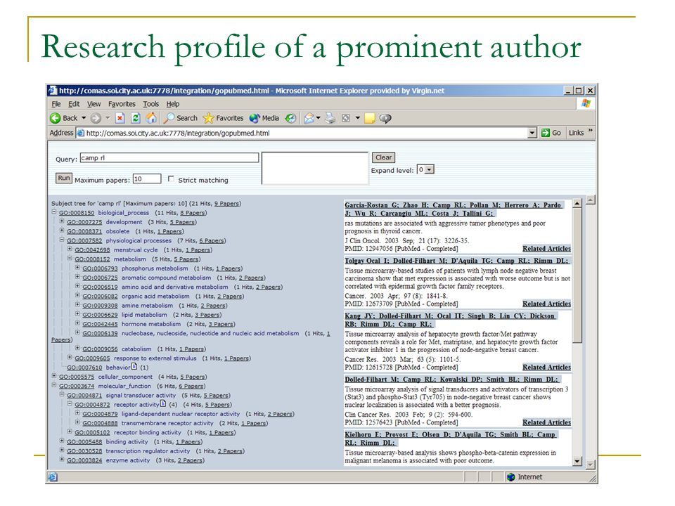Research profile of a prominent author