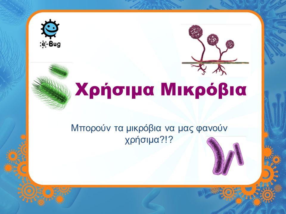 Χρήσιμα Μικρόβια Μπορούν τα μικρόβια να μας φανούν χρήσιμα?!?