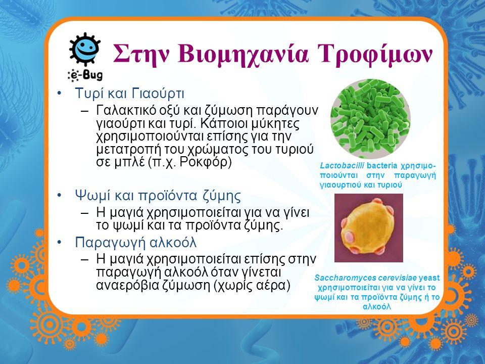 Στην Βιομηχανία Τροφίμων Τυρί και Γιαούρτι –Γαλακτικό οξύ και ζύμωση παράγουν γιαούρτι και τυρί.
