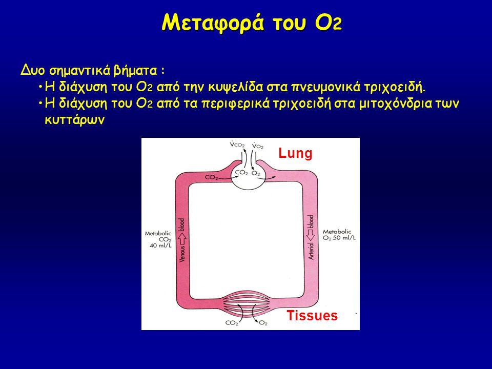 Μεταφορά του Ο 2 Μεταφορά του Ο 2 Δυο σημαντικά βήματα : Η διάχυση του Ο 2 από την κυψελίδα στα πνευμονικά τριχοειδή. Η διάχυση του Ο 2 από τα περιφερ