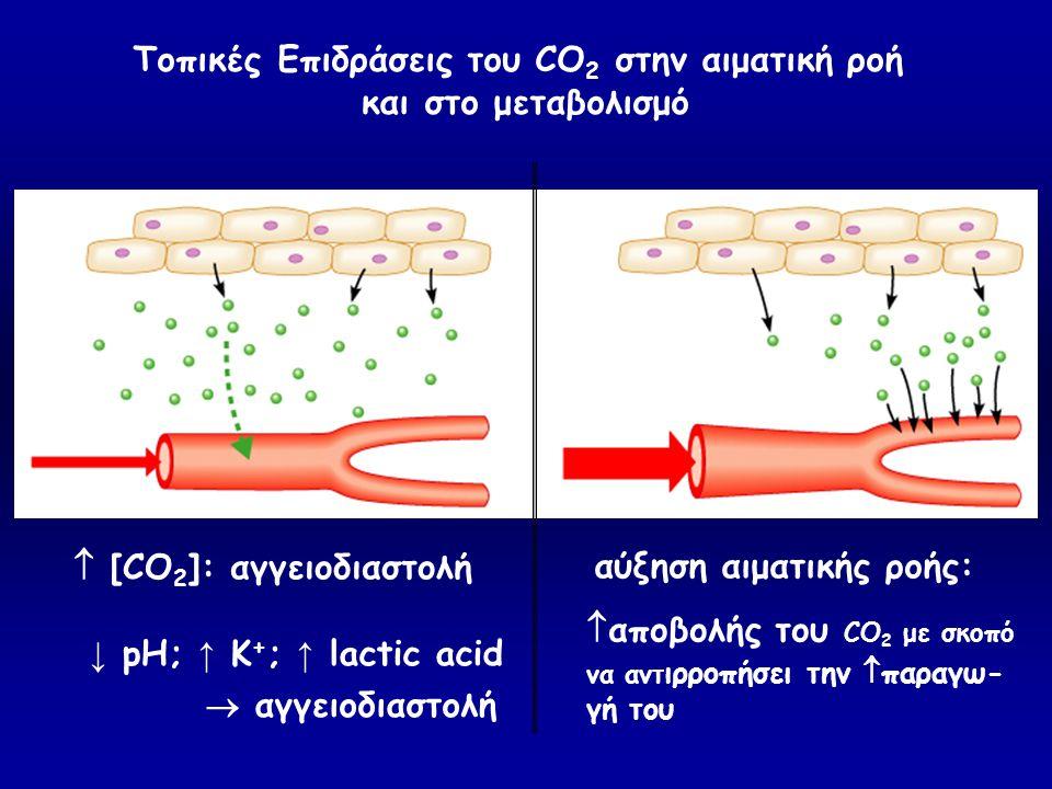  [CO 2 ]: αγγειοδιαστολή αύξηση αιματικής ροής: Τοπικές Επιδράσεις του CO 2 στην αιματική ροή και στο μεταβολισμό ↓ pH; ↑ K + ; ↑ lactic acid  αγγει