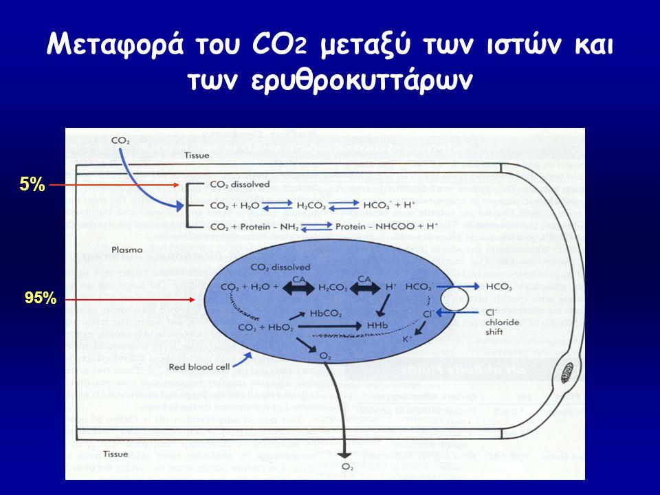 Μεταφορά του CO 2 μεταξύ των ιστών και των ερυθροκυττάρων 95% 5%