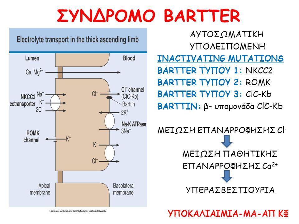 ΣΥΝΔΡΟΜΟ BARTTER ΑΥΤΟΣΩΜΑΤΙΚΗ ΥΠΟΛΕΙΠΟΜΕΝΗ INACTIVATING MUTATIONS BARTTER ΤΥΠΟΥ 1: NKCC2 BARTTER ΤΥΠΟΥ 2: ROMK BARTTER ΤΥΠΟΥ 3: ClC-Kb BARTTIN: β- υπομονάδα ClC-Kb ΜΕΙΩΣΗ ΕΠΑΝΑΡΡΟΦΗΣΗΣ Cl - ΜΕΙΩΣΗ ΠΑΘΗΤΙΚΗΣ ΕΠΑΝΑΡΡΟΦΗΣΗΣ Ca 2+ ΥΠΕΡΑΣΒΕΣΤΙΟΥΡΙΑ ΥΠΟΚΑΛΙΑΙΜΙΑ-ΜΑ-ΑΠ ΚΦ
