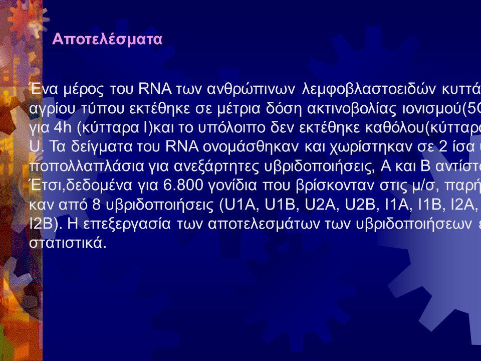 Αποτελέσματα Ένα μέρος του RNA των ανθρώπινων λεμφοβλαστοειδών κυττάρων αγρίου τύπου εκτέθηκε σε μέτρια δόση ακτινοβολίας ιονισμού(5Gy) για 4h (κύτταρα I)και το υπόλοιπο δεν εκτέθηκε καθόλου(κύτταρα U.