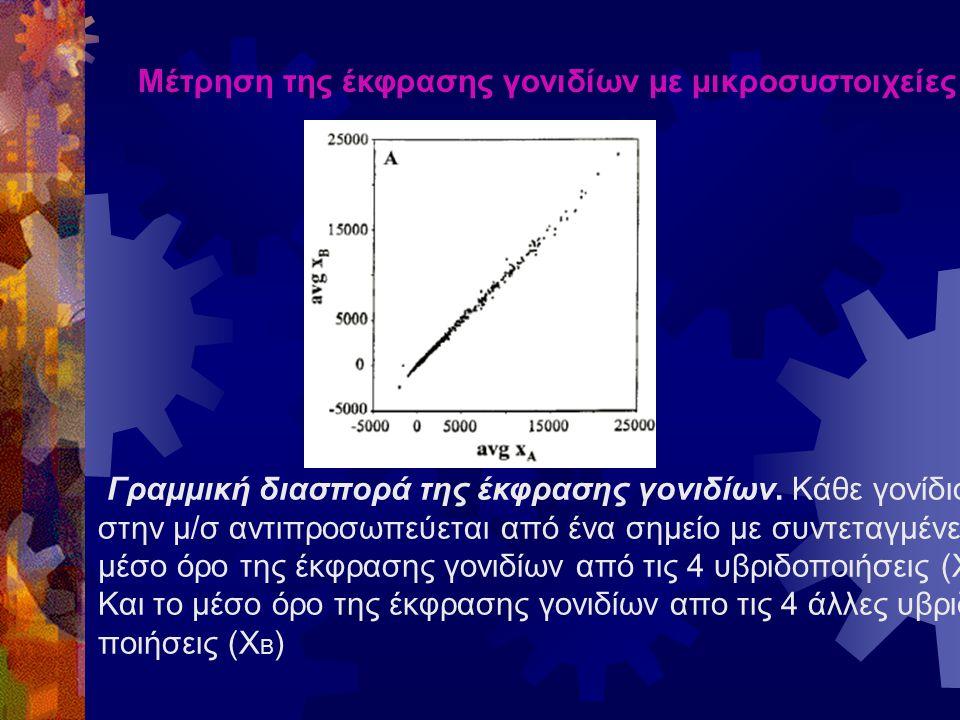 Μέτρηση της έκφρασης γονιδίων με μικροσυστοιχείες Γραμμική διασπορά της έκφρασης γονιδίων.
