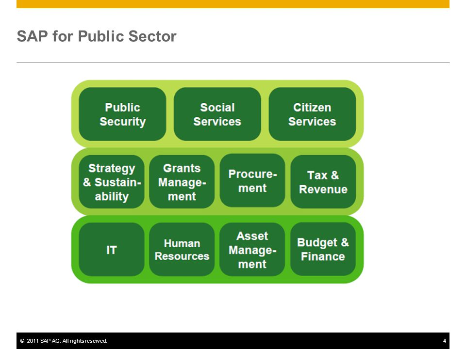 ©2011 SAP AG. All rights reserved.4 SAP for Public Sector