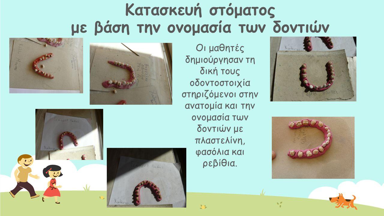 Κατασκευή στόματος με βάση την ονομασία των δοντιών Οι μαθητές δημιούργησαν τη δική τους οδοντοστοιχία στηριζόμενοι στην ανατομία και την ονομασία των
