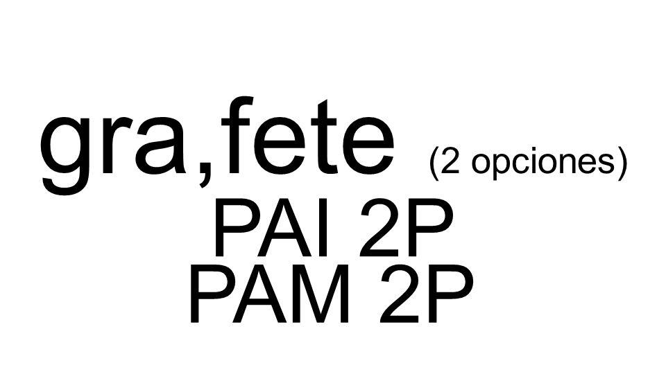 PAI 2P PAM 2P