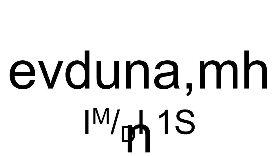 I M / D I 1S