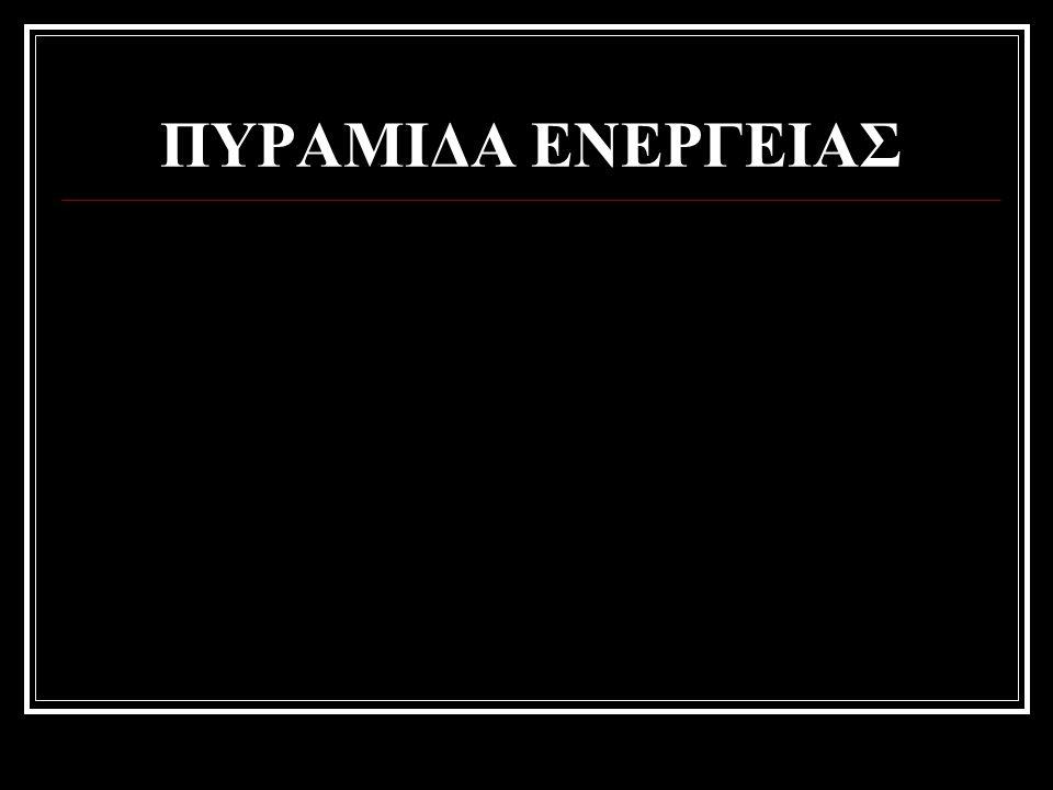 ΠΥΡΑΜΙΔΑ ΕΝΕΡΓΕΙΑΣ