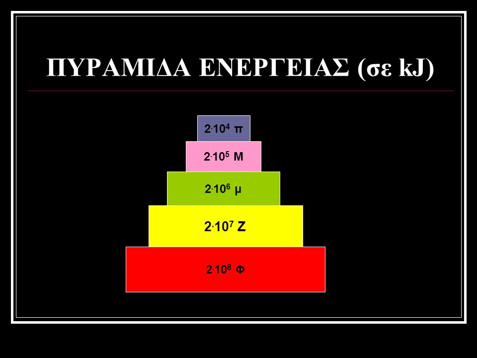 2. 10 8 Φ 2. 10 7 Ζ 2. 10 6 μ 2. 10 5 Μ 2. 10 4 π ΠΥΡΑΜΙΔΑ ΕΝΕΡΓΕΙΑΣ (σε kJ)