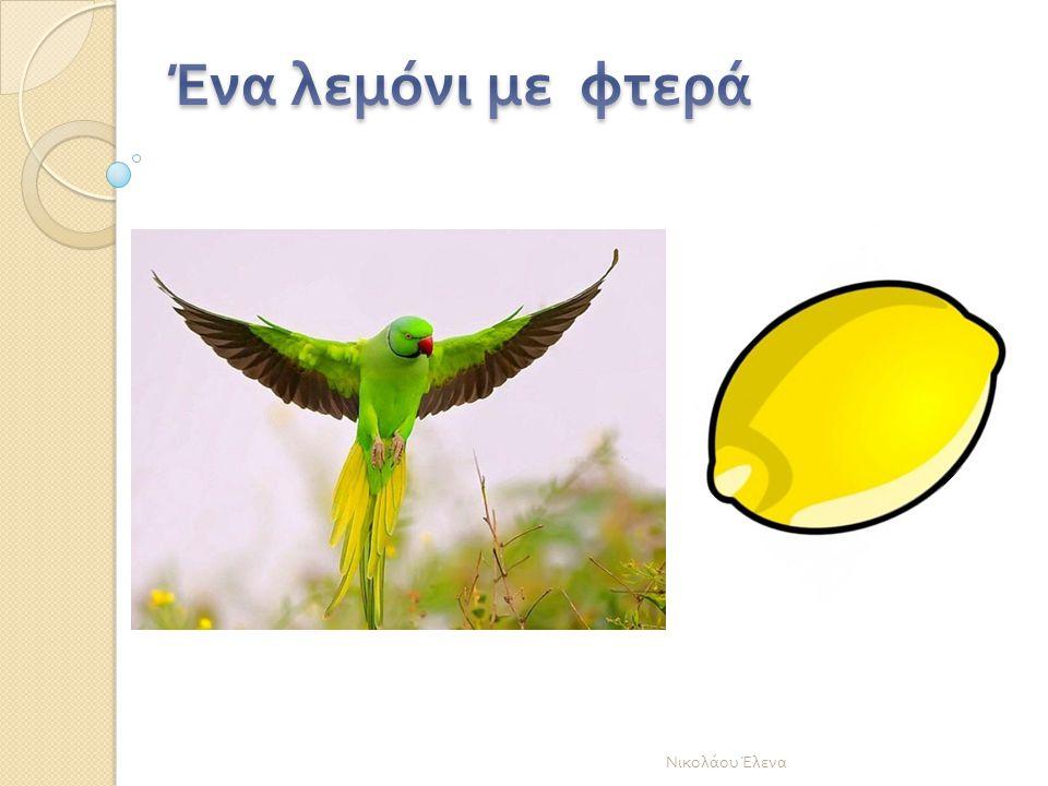 Νικολάου Έλενα