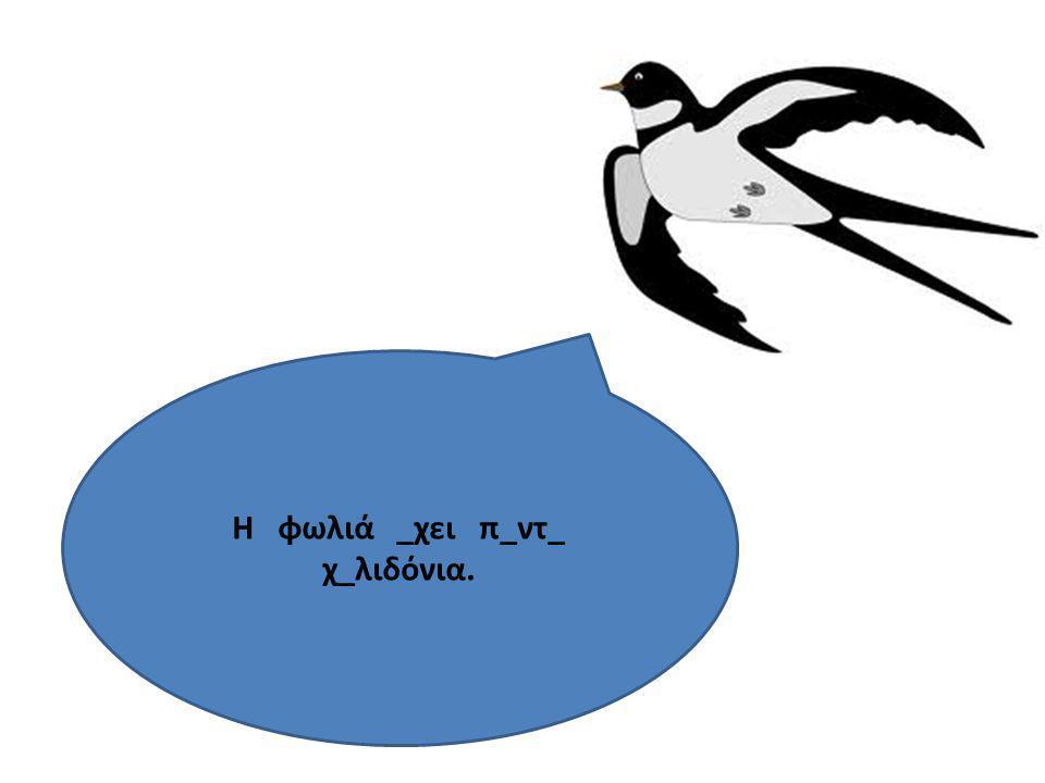 Πόσα χελιδόνια έχει η φωλιά; 4