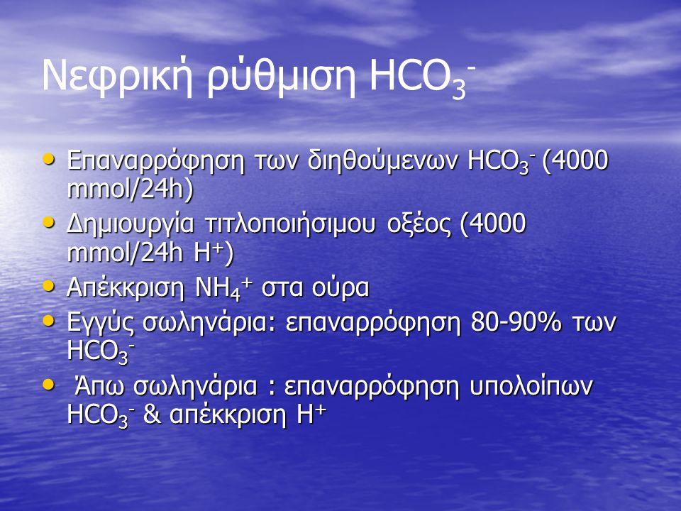 Νεφρική ρύθμιση HCO 3 - Επαναρρόφηση των διηθούμενων HCO 3 - (4000 mmol/24h) Επαναρρόφηση των διηθούμενων HCO 3 - (4000 mmol/24h) Δημιουργία τιτλοποιή