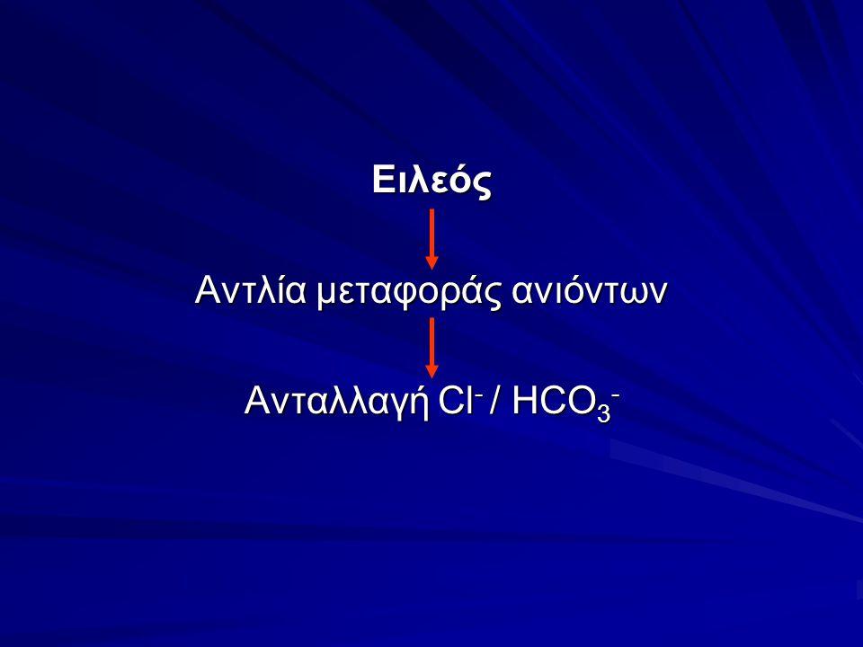 Ειλεός Αντλία μεταφοράς ανιόντων Ανταλλαγή Cl - / HCO 3 -