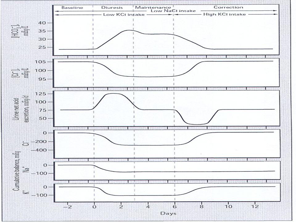 Μείωση κυκλοφορούντος όγκου Δράσεις μεσολαβητών Σύστημα ρενίνης-αγγειοτενσίνης-αλδοστερόνης: Μέσω της δράσης της ΑΙΙ αυξάνεται η επαναρρόφηση των HCO 3 - στο ΕΕΣ Μέσω της δράσης της αλδοστερόνης αυξάνεται η απέκκριση Η + και Κ + στο ΑΣ