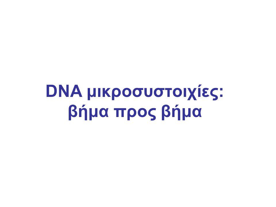 DNA μικροσυστοιχίες: βήμα προς βήμα