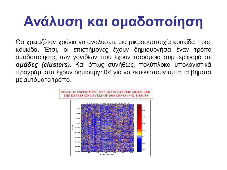 Ανάλυση και ομαδοποίηση Θα χρειαζόταν χρόνια να αναλύσετε μια μικροσυστοιχία κουκίδα προς κουκίδα. Έτσι, οι επιστήμονες έχουν δημιουργήσει έναν τρόπο