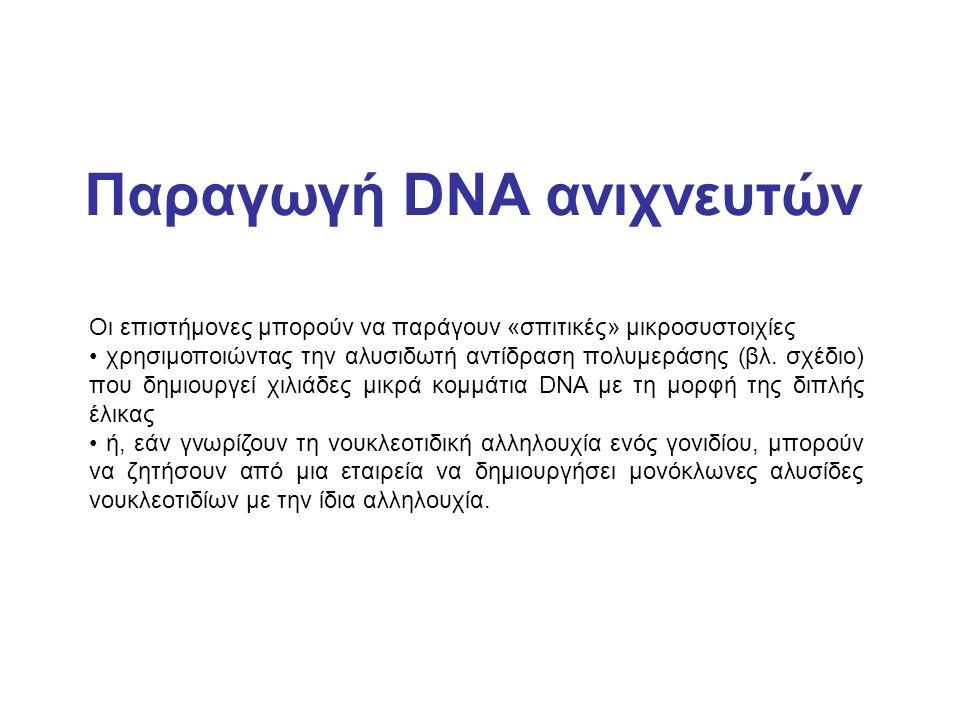 Παραγωγή DNA ανιχνευτών Οι επιστήμονες μπορούν να παράγουν «σπιτικές» μικροσυστοιχίες χρησιμοποιώντας την αλυσιδωτή αντίδραση πολυμεράσης (βλ. σχέδιο)