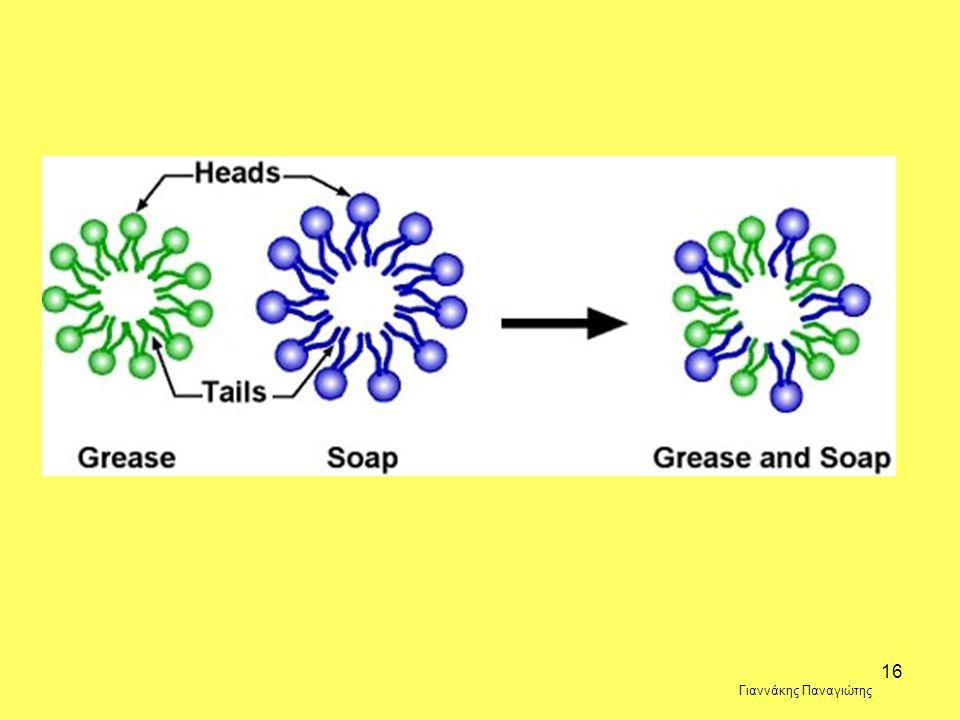 15 D. Το απορρυπαντικό ανοίγει τα μυκήλια τα οποία περιέχουν DNA. Γιαννάκης Παναγιώτης