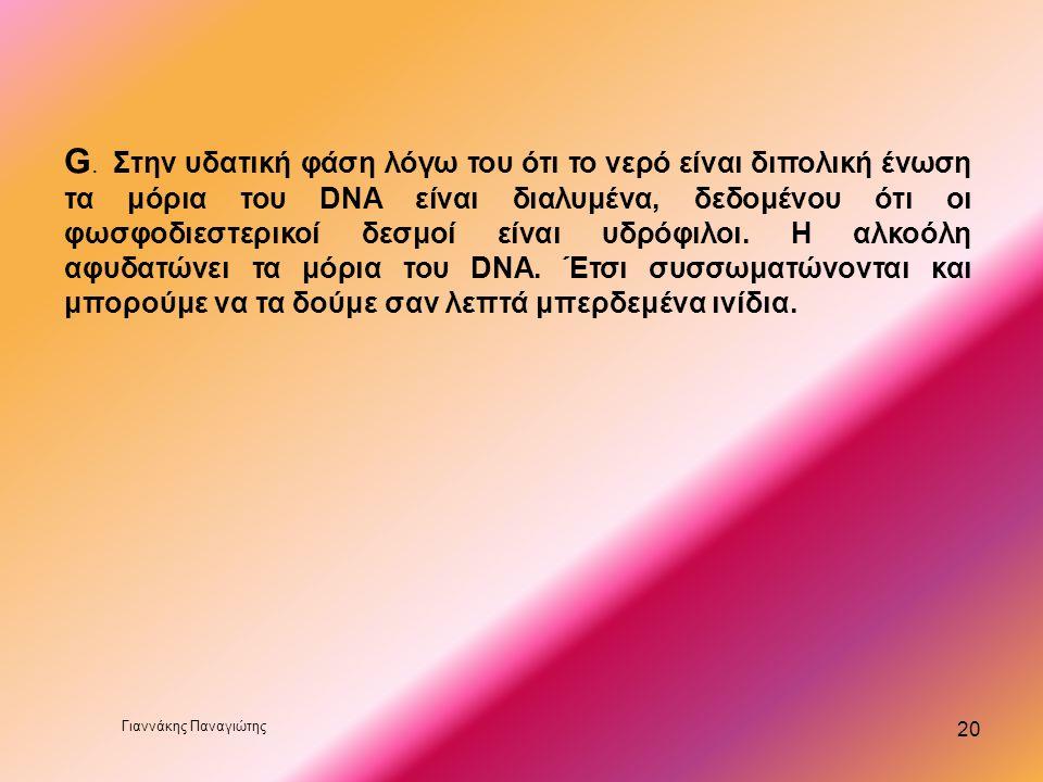 19 E.. Η σόδα ανεβάζει το pH διότι το DNA είναι σταθερό σε Ph 8. Το Ph του νερού είναι 6 λόγω του διαλυμένου CO 2, και λόγω της οξύτητας του σπάει του