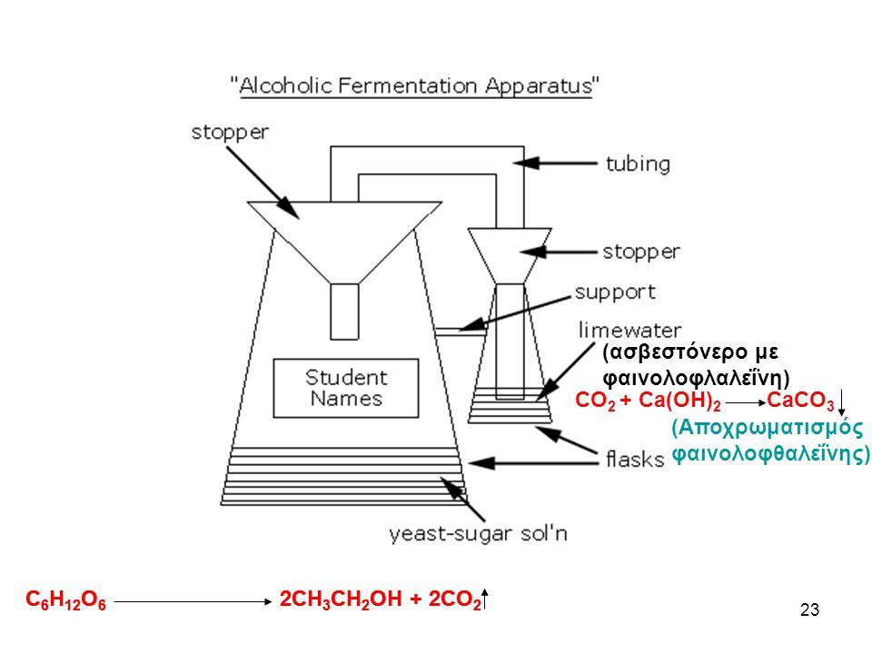 22 Βιβλιογραφία: εργαστηριακός οδηγός Γ΄ Λυκείου θετικ. Κατευθ. utah.edu/units/activities/extraction/enzyme.cfm http://www.science-projects.com/onionD