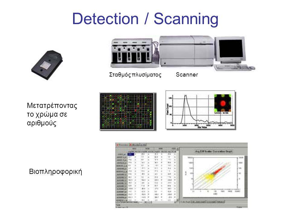 Detection / Scanning Σταθμός πλυσίματος Scanner Βιοπληροφορική Μετατρέποντας το χρώμα σε αριθμούς
